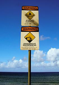 Ali'i Beach Lifeguards at Tower, Haleiwa