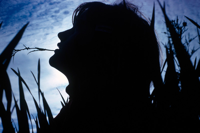 Silhouette of girl in tall grass