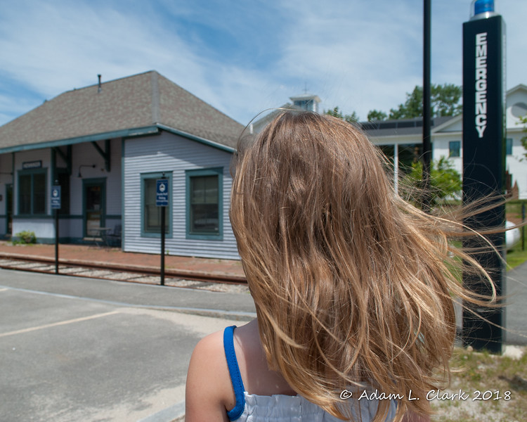 2018.06.16<br> I wanted to take a picture of her front of the depot, and she insisted on me taking a picture of her hair first
