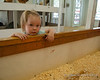 Looking at the baby chickens