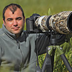 José Manuel Reyes WEB