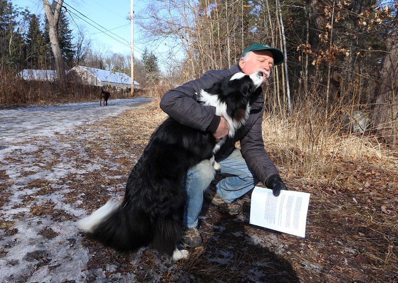 Volunteer Rick Findlay of Littleton gets a kiss from Spider, a neighbor's dog who'd just arrived for a walk at Prouty Woods. Findlay is involved with the New England Forestry Foundation, open space preservation, and fighting invasive species. (SUN/Julia Malakie)