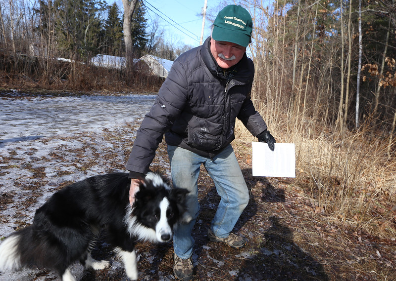 Volunteer Rick Findlay of Littleton with Spider, a neighbor's dog who'd just arrived for a walk at Prouty Woods. Findlay is involved with the New England Forestry Foundation, open space preservation, and fighting invasive species. (SUN/Julia Malakie)