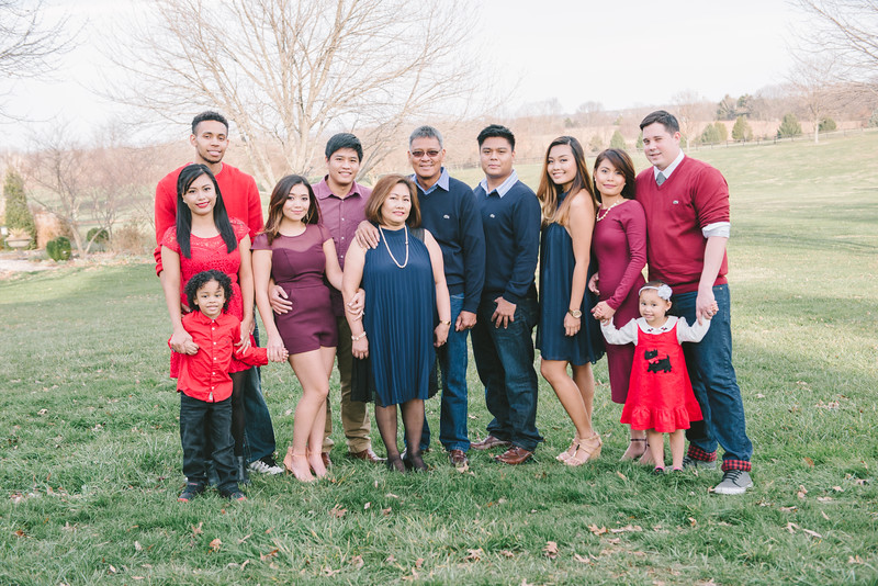 MINA FAMILY 2015-001