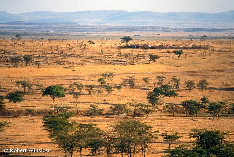 Maasai Village called a Boma or Manyatta, Masai Mara, Kenya, Africa