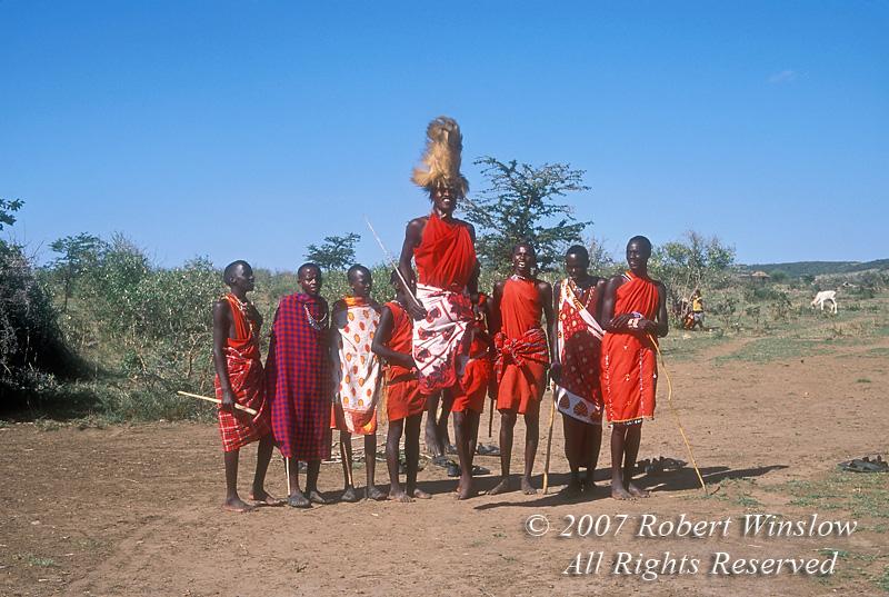 Male Maasai Warrior with Lion Mane Headdress, Dancing,  Masai Mara National Reserve, Kenya, Africa