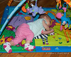 2018.08.24<br> While laying/playing on her mat, Madison got herself up on her side and almost over onto her belly