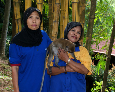 Workers at Bukit Nanas Forest Reserve introduce me to Nora, a young semi-socialized monkey. Kuala Lumpur, Malaysia