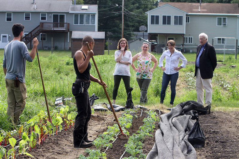 Attorney general Maura Healey visits Mill City Grows' Urban Farm in Pawtucketville. From left, Mill City Grows employees Brian Mariano of Arlington and Nikki Tolani of Lowell, using scuffle hoes to uproot small weeds in rows of Swiss chard and kale, executive director Francey Slater, director of programs Jessica Wilson, Maura Healey, and Lowell mayor Bill Samaras. (SUN/Julia Malakie)