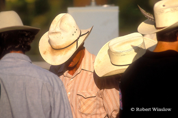 No Model Release, Cowboys Talking before a Rodeo, Durango, Colorado