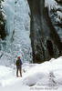 Woman Cross-country Skiing, Fairy Falls, Winter, Yellowstone National Park, Wyoming