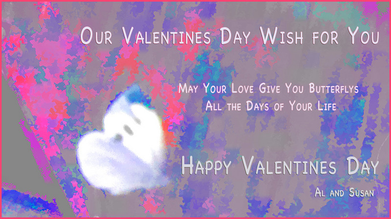 Valentines day card 2011   color shifted image from India trip  butterfly/heart