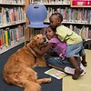 Library Visit with Gracie