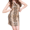Country Divas-7252 PNG