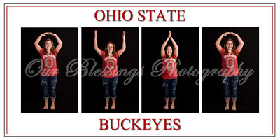 Buckeyes storyboard finished 20x10