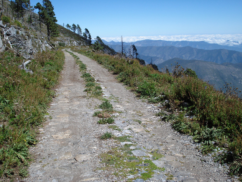 Road to the top of Mt. Potosi, Mexico, 2007