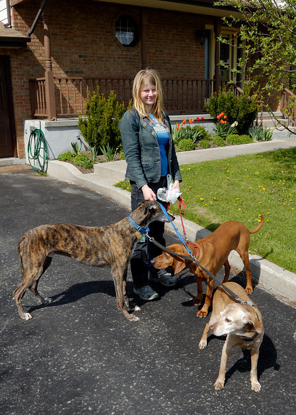 Helen walking the dogs: Cassie, Pumpkin and Annie.