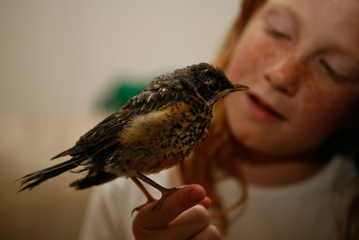 Ashley found this baby Robin in Utah and helped nurture it to a good life. We made a 1000-mile road trip to a California sanctuary for injured birds so it could have a better chance of surviving. The little Robin was eventually released into the wild after it was taken care of. :)