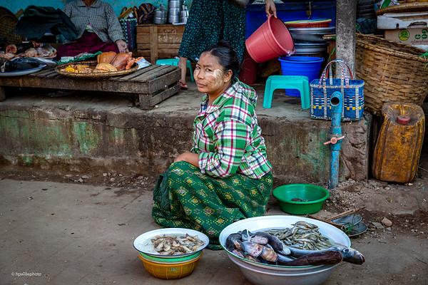 A fish dealer at the market