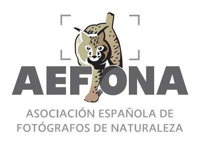 AEFONA WEB