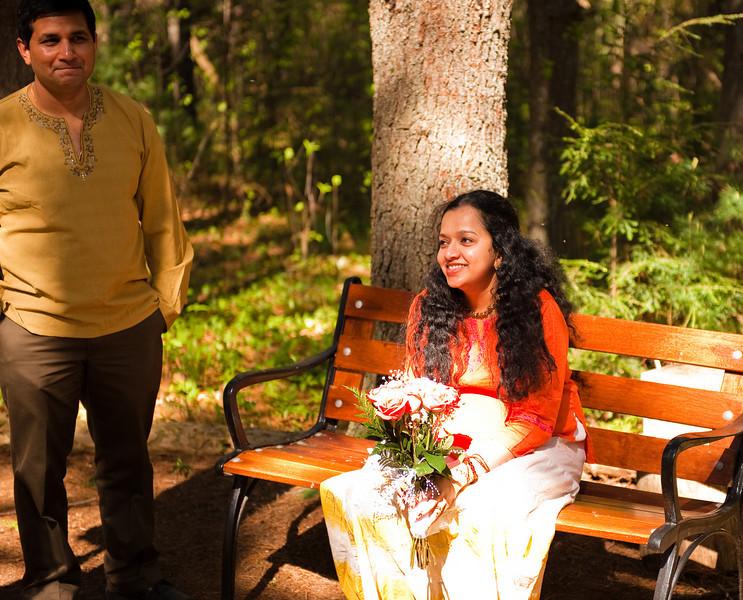 Niloufer and Mukunds Wedding -71