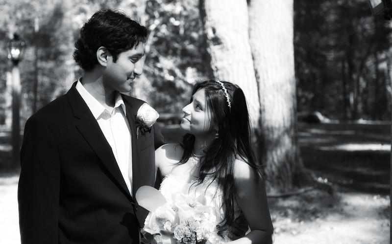 Niloufer-and-Mukunds-Wedding--73