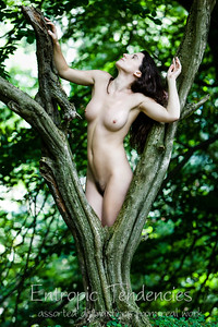 Katy_T woodland nude Date: 13 August 2010 © Copyright 2010 Barrie Spence