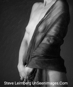 Nude  - B&W Copyright 2015 Steve Leimberg - UnSeenImages Com A8443388
