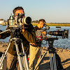 Two camera shoot of shorebirds