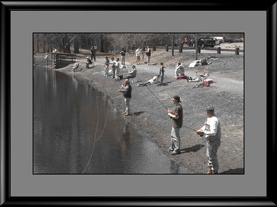 """Opinions on """"Selective Color"""" & B&W? Please browse through gallery. Thanks,"""