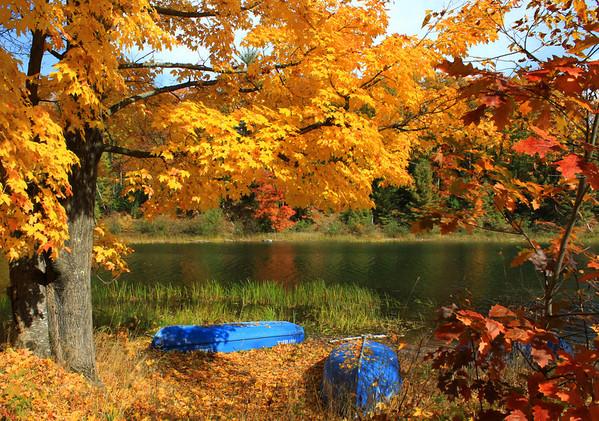 """Autumn at the Lake"""