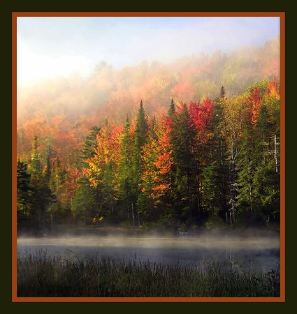 Fall in Vermont by NEM Photo  WINNER of the November 2011 Photograph of the Month contest!