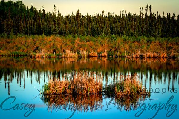 Peat Pond - Goldstream Road - Fairbanks, AK
