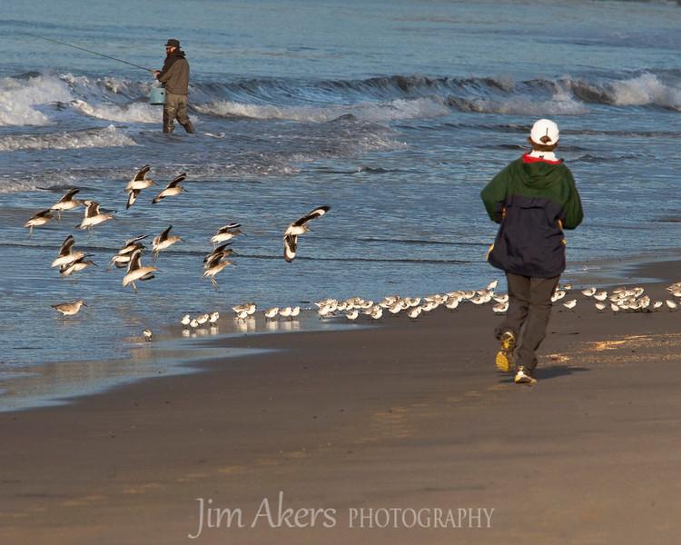Santa Monica, California_ February early morning run.
