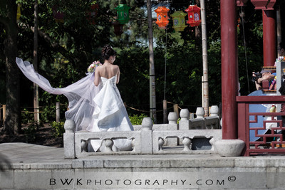 The Bride in the Park