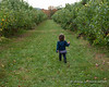 Madison on the hunt for another apple