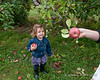Madison learning how to pick an apple