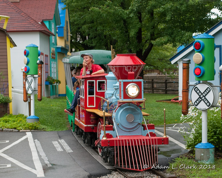 After the rain stopped, we went for a train ride around the park