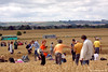 Crop Circle Tourists 005