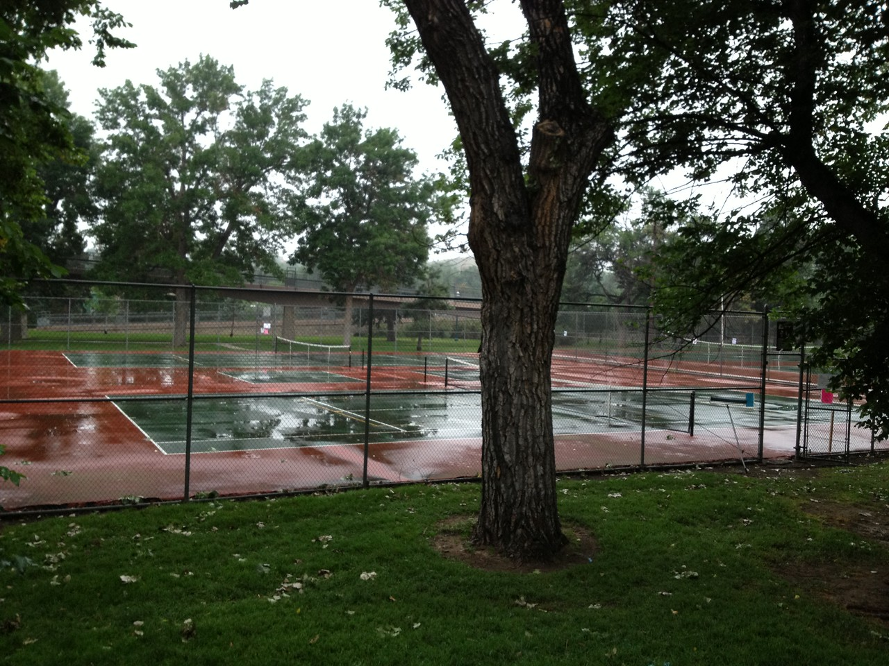 Rats - the overnight cleaning crew forgot to dry the courts!