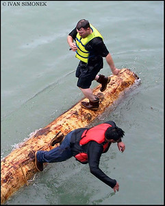 """LOG ROLLING 4"",July4,Wrangell,Alaska,USA."
