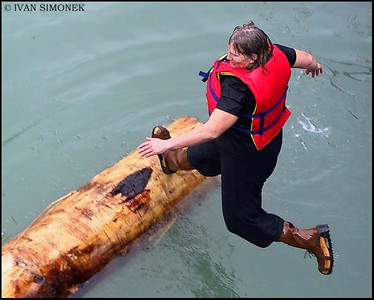 """LOG ROLLING 2"",July4,Wrangell,Alaska,USA."