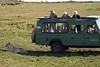 Cheryl, Pete, Maxine and Lion, Masai Mara