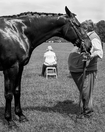 Sutton-On-The-Forest Horse Show - North Yorkshire UK 2017