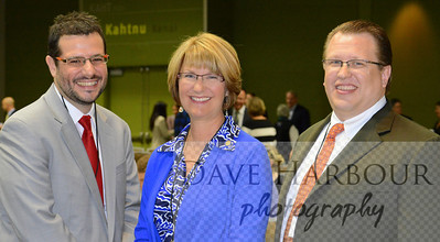 Anna Fairclough, Alaska State Senate, Budget and Audit Committee, 2012 Gas Symposium, with Nikos Tsafos (L) and Stephen Beck