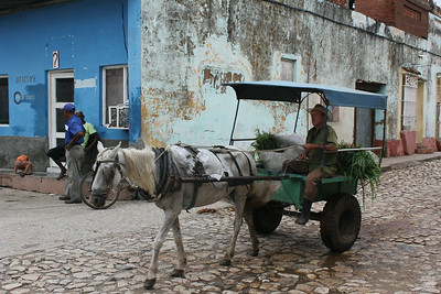 Horsedrawn Cart