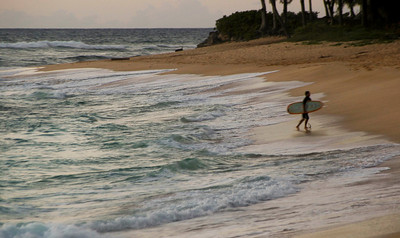 Surfer, Sunset Beach, North Shore of O'ahu, Hawai'i