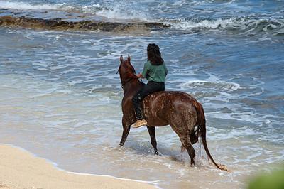 Female horseback rider on the beach North Shore of O'ahu, Hawai'i