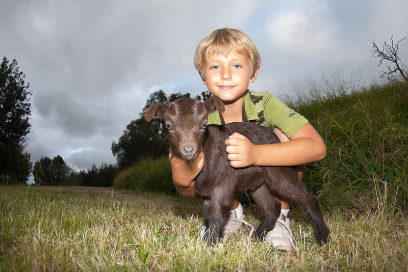 Young boy and baby wild goat - Puuanahulu, Big Island, Hawaii
