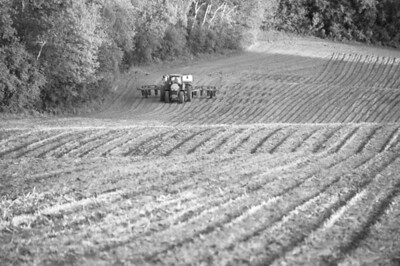 Farm fields - corn planting in spring - 2